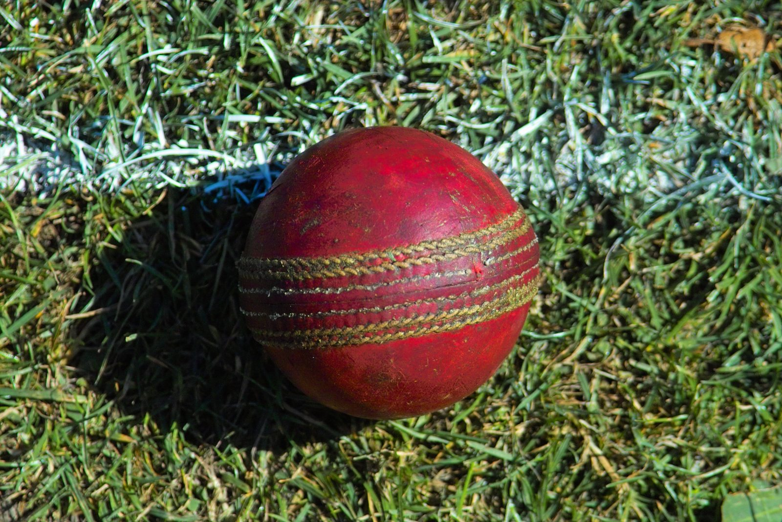 Who will bowl first today match prediction
